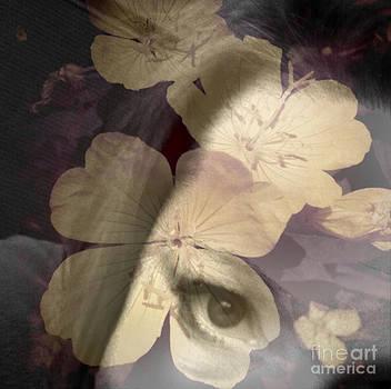 Flora Framed Me by Trish Hale