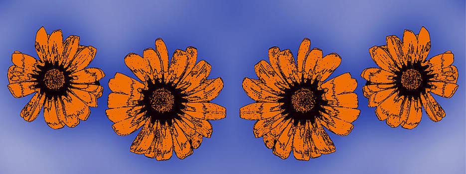 Floral composition by Jesus Nicolas Castanon
