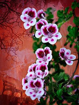 Zoran Buletic - Floral Memories