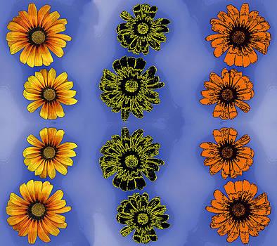 Floral play by Jesus Nicolas Castanon