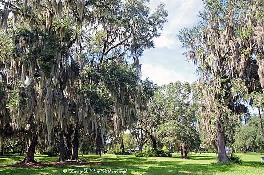Florida Plantation by Larry Van Valkenburgh