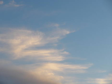 Florida Sky I by Suzanne Fenster