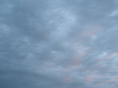 Florida Sky II by Suzanne Fenster