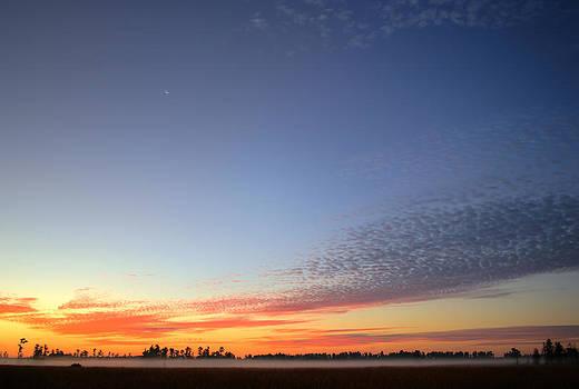 Florida Winter Sunrise by Matt Merritt