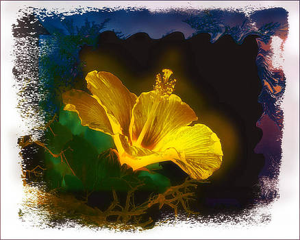Flower 4 by Fuad Azmat