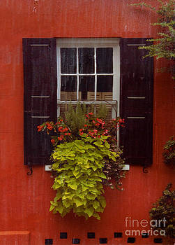 Flower Box by Bob Senesac