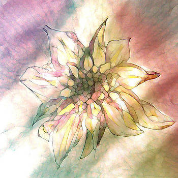 Flower by  Chini