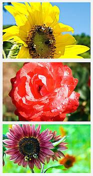 Flower Collage Part One by Susan Leggett