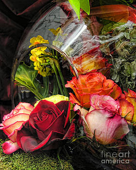 Anne Ferguson - Flower Cornicopia