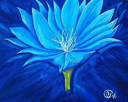 Flower For Lisa by Phillip Whitehead