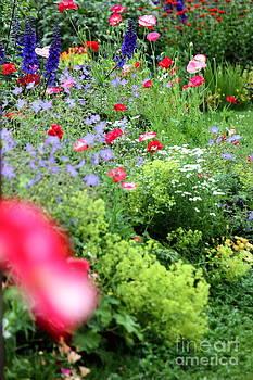 Sophie Vigneault - Flower Garden