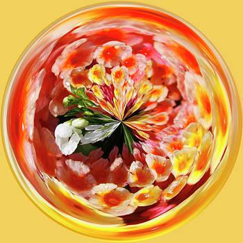 Flowering Orb by Sandi Blood