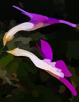Flowers Dancing by Jim Proctor