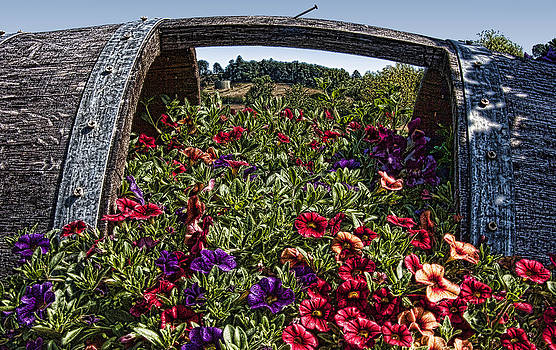 Flowers in a Barrel IMG 5425 by Torrey E Smith