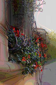 Flowers in a Window Box by Jan Lowe
