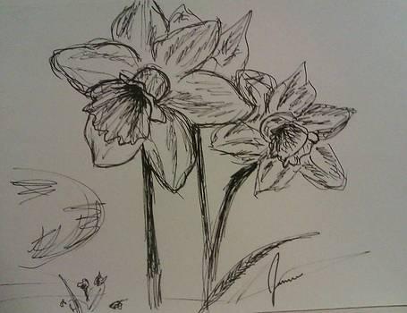 Flowers by Jamie Mah