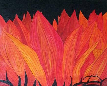 Flowers on Fire by Nancy Nuce