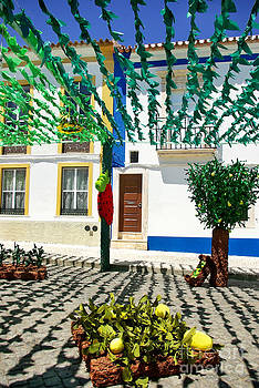Flowery streets traditional party Redondo village   by Inacio Pires