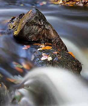 David Pringle - Flowing River
