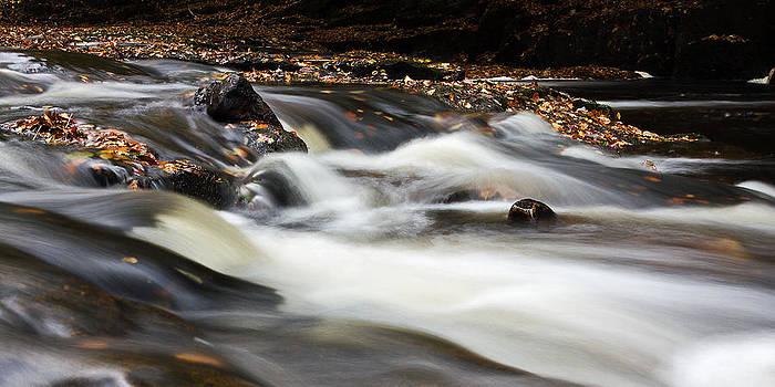 David Pringle - Flowing River IV