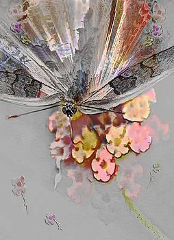 Flutter Fan by Jill Balsam