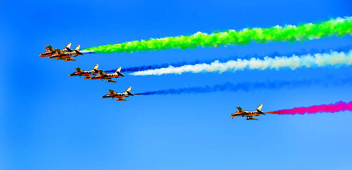 Flying Colors by Farah Faizal
