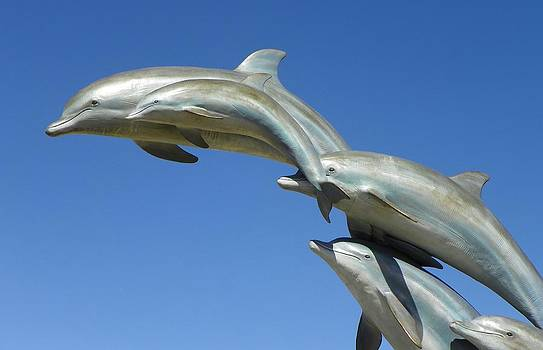 Flying dolphins by Vicky Mowrer