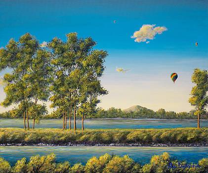 Flying Free by Marc Dmytryshyn