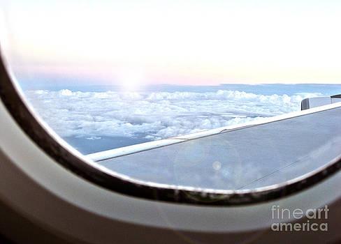 Flying Home by Joanne Kocwin