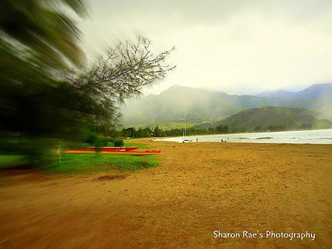 Focal Beach by Sharon Farris