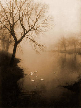 Fog On The Lake by JDon Cook