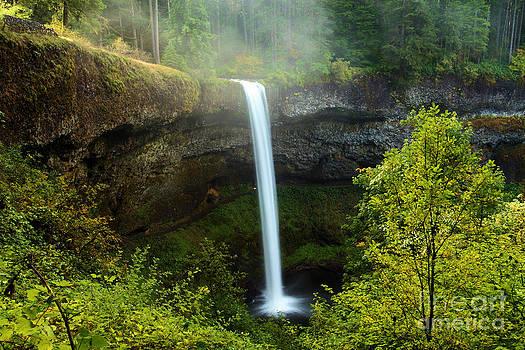 Adam Jewell - Fog Over The Falls