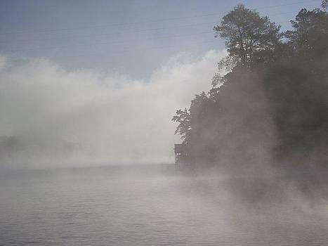 Fog by Terrill Wilson