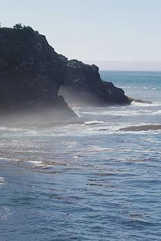 Foggy Coastline by Wanda Jesfield