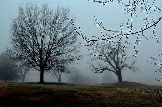 Foggy depth of field by Esther Luna
