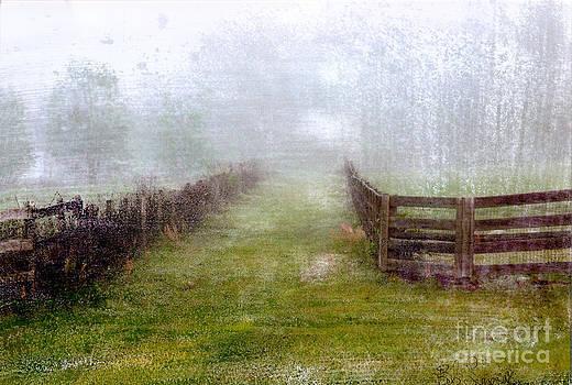 Foggy Fence by Bob Senesac