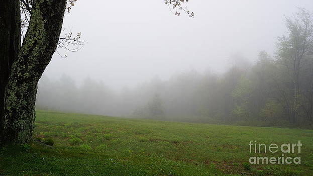 Chuck Smith - Foggy Field