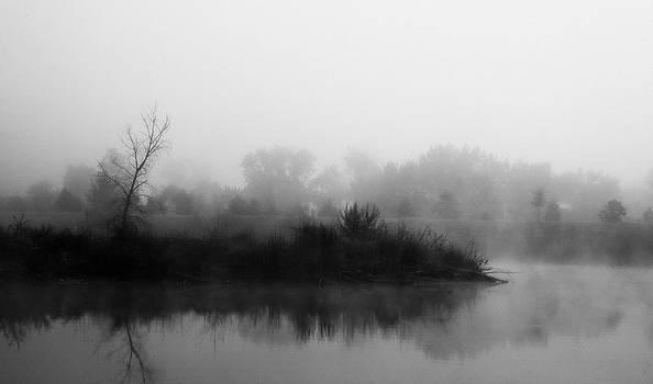 Foggy Morning by Aref Nammari