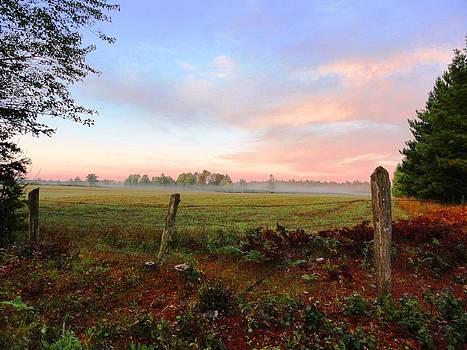 Sue Duda - Foggy Morning Field