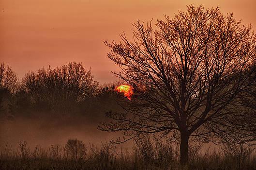 Foggy Sunrise by Todd Heckert
