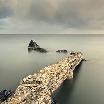Follow Me Freely by Pawel Klarecki