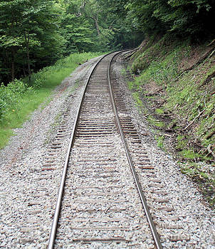 Follow the Tracks by Denise Jenks