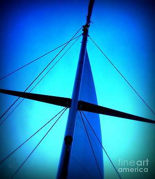 Following the sky by Leela Arnet