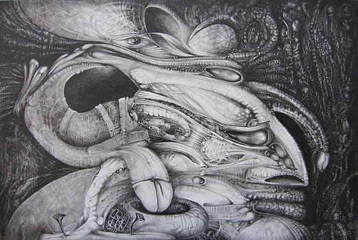 Fomorii General by Otto Rapp