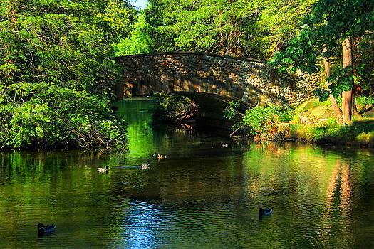 Foot Bridge at the Pond by Cathy Leite Photography