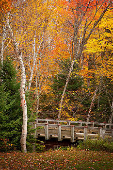 Foot Bridge in the Fall 6239  by Ken Brodeur