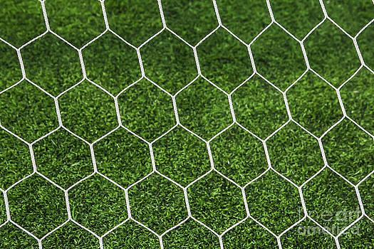 Football Goal Net by Mongkol Chakritthakool