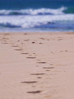 Michelle Wrighton - Footprints