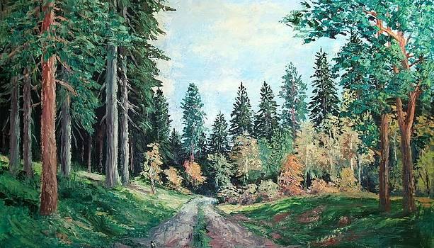 Forest 4 by Stanislav Zhejbal