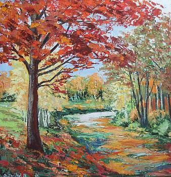 Forest 8 by Stanislav Zhejbal